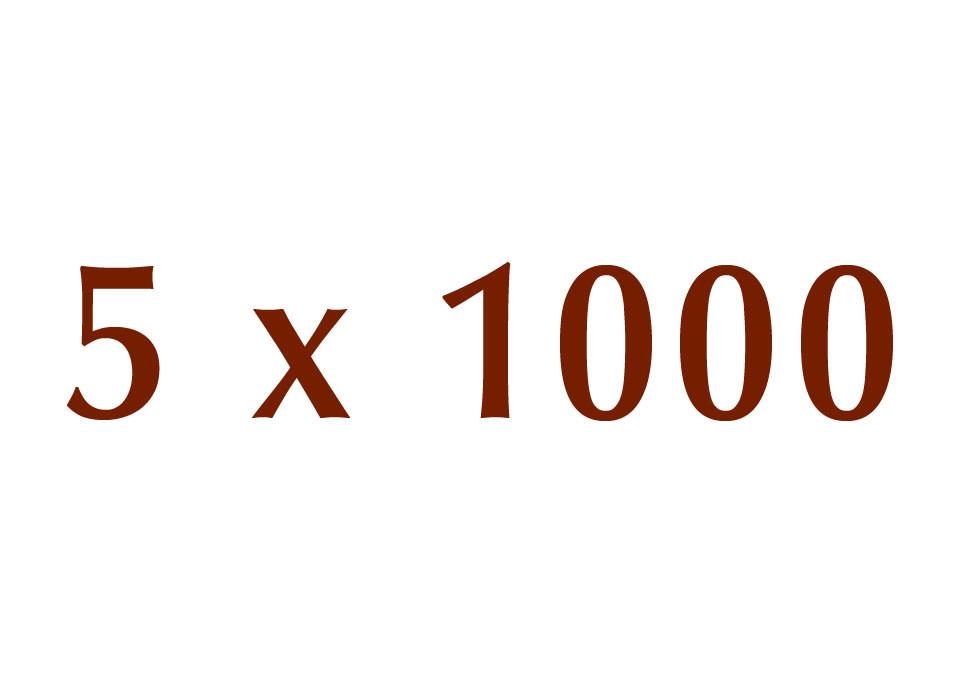 5x1000-news-1024x683
