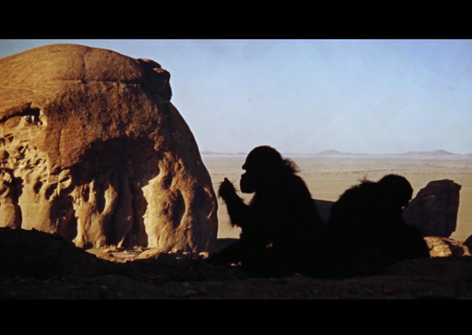 Kubrick-news-1024x683