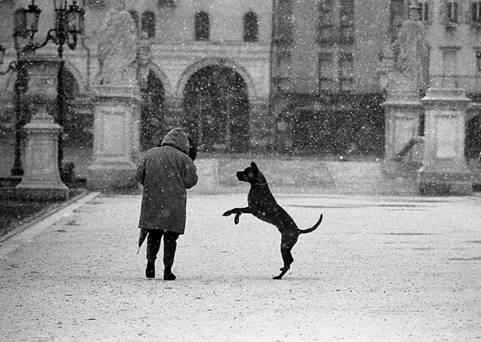 © Fasolo Ferdinando  Padova 1999